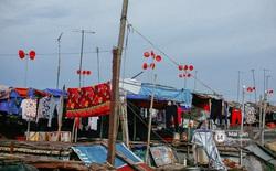 Chuyện về những chiếc chậu nhựa đỏ treo cao nơi xóm nghèo ven sông lớn nhất miền Bắc