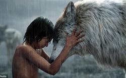 Phim Jungle Book tuyệt hay, nhưng thực sự thì động vật có thể nuôi nấng con người khôn lớn không?