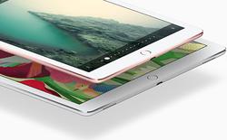 """Lộ thông tin về iPad """"không viền màn hình"""" 10,9 inch, ra mắt tháng 3/2017"""