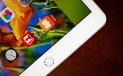 Ai sẽ bỏ 13.500 USD ra để mua một chiếc iPad? Có đấy
