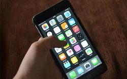 Nhân viên của Apple nói công ty đã biết về lỗi chết cảm ứng từ lâu nhưng không bao giờ chịu thừa nhận điều đó