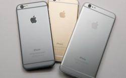 """Ấn Độ chính thức từ chối trở thành """"bãi rác iPhone cũ"""" của Apple"""