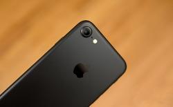 Chưa đầy 2 tuần, iPhone 7 tại Việt Nam mất giá gần 10 triệu, hàng chính hãng vẫn là sự lựa chọn hợp lý hơn cả