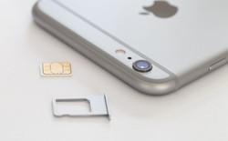 iPhone hàng xách tay bản Quốc tế bỗng chốc bị khóa SIM: Người dùng lo lắng, cửa hàng điêu đứng