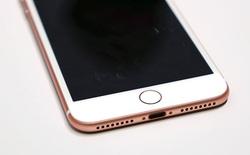 Mỏng hơn? Âm thanh tốt hơn? Không, đây mới là lý do thực sự khiến Apple loại bỏ cổng tai nghe