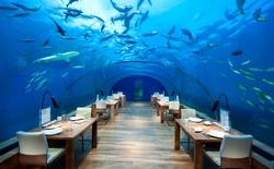 """19 nhà hàng """"độc nhất vô nhị"""" mà bạn sẽ phải ước một lần được ghé qua"""