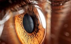 Lần đầu tiên thử nghiệm kỹ thuật chữa mù lòa ở người tại Mỹ