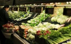 Điều gì sẽ xảy ra nếu cả thế giới đều ăn chay?