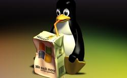 25/8/2016: Chúc mừng sinh nhật tuổi 25 của hệ điều hành Linux