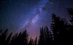 Đã bao giờ bạn được chứng kiến vẻ đẹp thật sự của bầu trời đêm ngàn sao huyền ảo như thế này chưa?