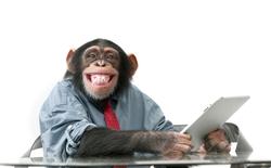 Xem video khỉ bố dạy con sử dụng tablet đang gây sốt mạng xã hội
