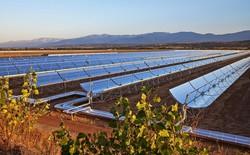 Morocco khánh thành nhà máy điện Mặt Trời lớn nhất thế giới