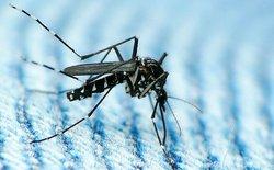 Phát hiện trường hợp lây nhiễm Zika qua đường tình dục đầu tiên tại Mỹ