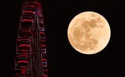 Mãn nhãn với chùm ảnh siêu trăng thế kỷ trên khắp Việt Nam