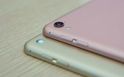 iPad Pro vàng hồng tại VN: màn sáng hơn, camera lồi, giá gần 18 triệu đồng