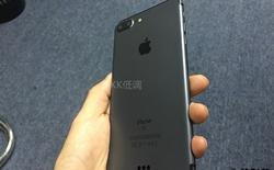 Ngắm iPhone 7 Plus bản màu đen nam tính và đầy tinh tế