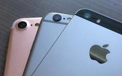 Bức ảnh so sánh này cho thấy iPhone 7 khác biệt thế nào khi đặt cạnh iPhone 6s, iPhone SE