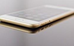Đại diện FPT Shop: iPhone 7 chính hãng sẽ có giá dự kiến 18,8 triệu đồng!