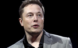 """Elon Musk vừa bị một fan cứng cựa """"quay lưng"""" và điều đó sẽ khiến cho Tesla gặp khó khăn lớn"""