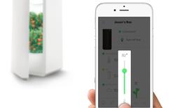 Công nghệ độc đáo cho bạn trồng rau sạch giàu dinh dưỡng ngay trong tủ lạnh