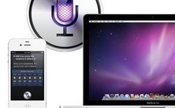 Siri chính thức có mặt trên máy tính Mac