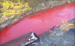 Một dòng sông tại Nga bỗng nhiên hóa đỏ tươi như máu