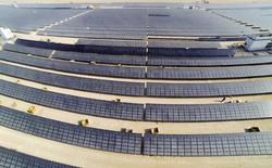 Vương quốc giàu có Dubai vừa phá kỷ lục về giá điện mặt trời: rẻ bằng 1/3 giá điện ở Việt Nam