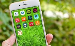 7 chi tiết siêu nhỏ chứng tỏ Apple chăm chút iPhone đến thế nào