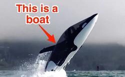 Chiêm ngưỡng tàu lướt sóng có khả năng lao vọt lên không trung đến 7 mét