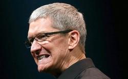 Cổ phiếu Apple có năm đầu tiên mất giá kể từ 2008