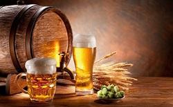 Các nhà khoa học Bỉ vừa làm được điều khó tin: biến nước tiểu của bạn thành bia