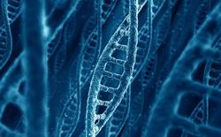 """Viết lại mã gen để sản sinh protein mới, các nhà khoa học đang tiến gần hơn tới việc viết lại """"bộ mã cuộc sống"""""""