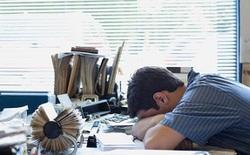 """Tiến sĩ tại Đại học Oxford: """"Học và làm trước 10 giờ sáng là tra tấn học sinh và nhân viên"""""""
