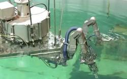 Toshiba chế tạo robot dọn rác thải hạt nhân tại Fukushima