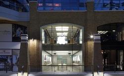 Vì sao Ireland kiên quyết chống Ủy ban Châu Âu EC để không phải nhận khoản tiền 14,5 tỷ USD từ Apple?
