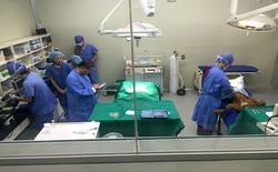 Máy phẫu thuật bị ngừng hoạt động do... trình diệt virus