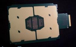 Intel sẽ có CPU Skylake-EX và Knights Landing sử dụng socket LGA 3647, kích thước gấp 4 lần bình thường
