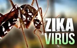 Số ca nhiễm Zika tại Singapore tăng vọt đáng lo ngại