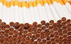 WHO: Thuốc lá giết chết 7 triệu người mỗi năm và khoảng 1 tỷ người cho đến hết thế kỷ