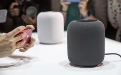 """Lùi lịch ra mắt HomePod, Apple đang đánh mất """"mỏ vàng"""" loa thông minh vào tay các đối thủ khác?"""