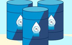 Tổng hợp thành công hydrogen từ ánh sáng và chất béo với giá rẻ - Một bước tiến mạnh mẽ cho việc thay thế nhiên liệu hóa thạch