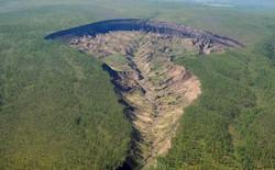 """""""Cánh cửa Địa ngục"""" ở Siberia tiết lộ bí mật về khu rừng cổ đại"""