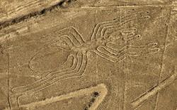 Vì sao cách đây hàng nghìn năm con người có thể vẽ được những hình giống con nhện to đến vài trăm mét như thế này?