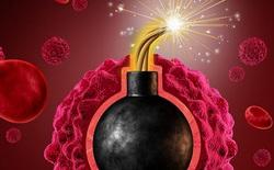"""Các nhà khoa học tìm ra cách kích hoạt một """"protein đao phủ"""", khiến tế bào ung thư tự giết chết chính nó"""