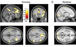 Các nhà khoa học nói rằng máy quét não có thể nhận biết được đâu là tội phạm