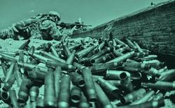 Bộ Quốc phòng Hoa Kỳ muốn phát triển những loại đạn mà khi rơi xuống đất, chúng sẽ mọc thành cây