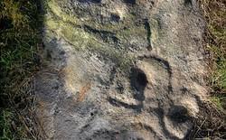 Nhà khảo cổ học không chuyên tìm ra bức selfie đầu tiên có tuổi thọ 4.000 tuổi