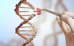 Các nhà khoa học Mỹ chính thức công bố nghiên cứu chỉnh sửa gen phôi người, vậy họ đã làm gì?
