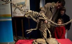 """""""Khủng Long Frankenstein"""" là kết nối tiến hóa giữa khủng long ăn thịt và ăn cỏ"""