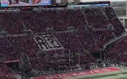 """Apple bị fan bóng bầu dục """"troll"""" ngay giữa sân vận động với hơn 100.000 người đang ngồi"""